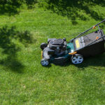 Reasons to Hire a Professional Lawn Mower
